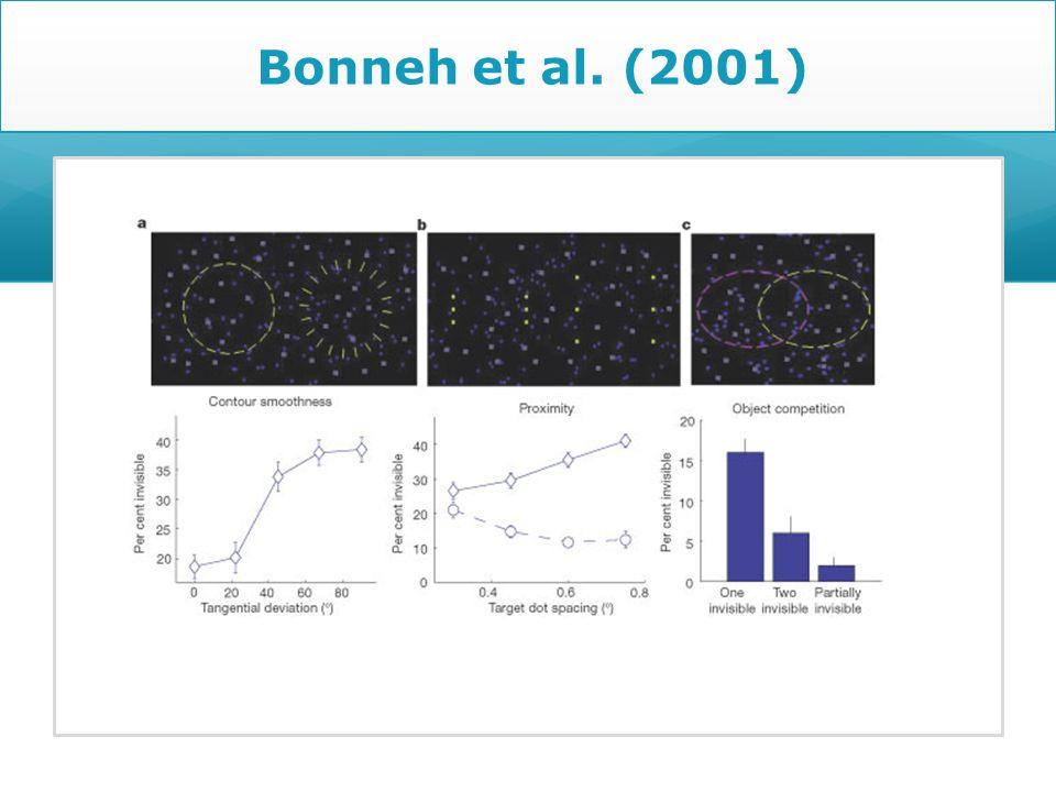 Bonneh et al. (2001)