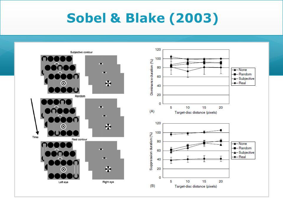 Sobel & Blake (2003)