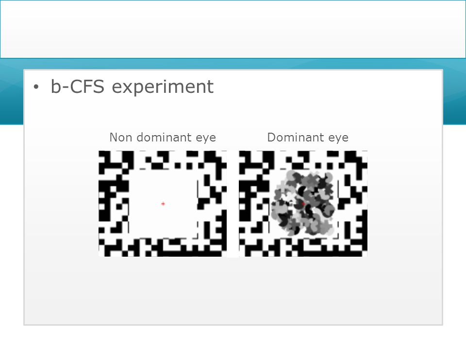 b-CFS experiment Non dominant eyeDominant eye