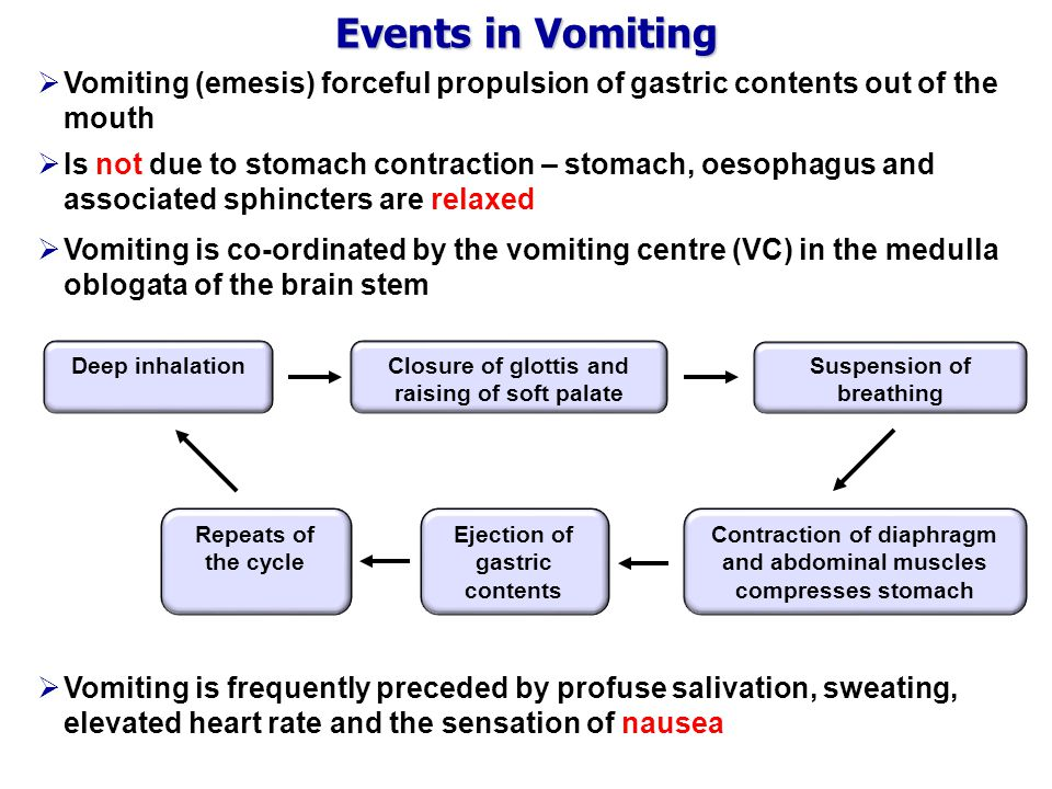 Events in Vomiting  Vomiting (emesis) forceful propulsion of gastric contents out of the mouth  Is not due to stomach contraction – stomach, oesophagus and associated sphincters are relaxed  Vomiting is co-ordinated by the vomiting centre (VC) in the medulla oblogata of the brain stem Deep inhalationClosure of glottis and raising of soft palate Suspension of breathing Contraction of diaphragm and abdominal muscles compresses stomach Ejection of gastric contents Repeats of the cycle  Vomiting is frequently preceded by profuse salivation, sweating, elevated heart rate and the sensation of nausea