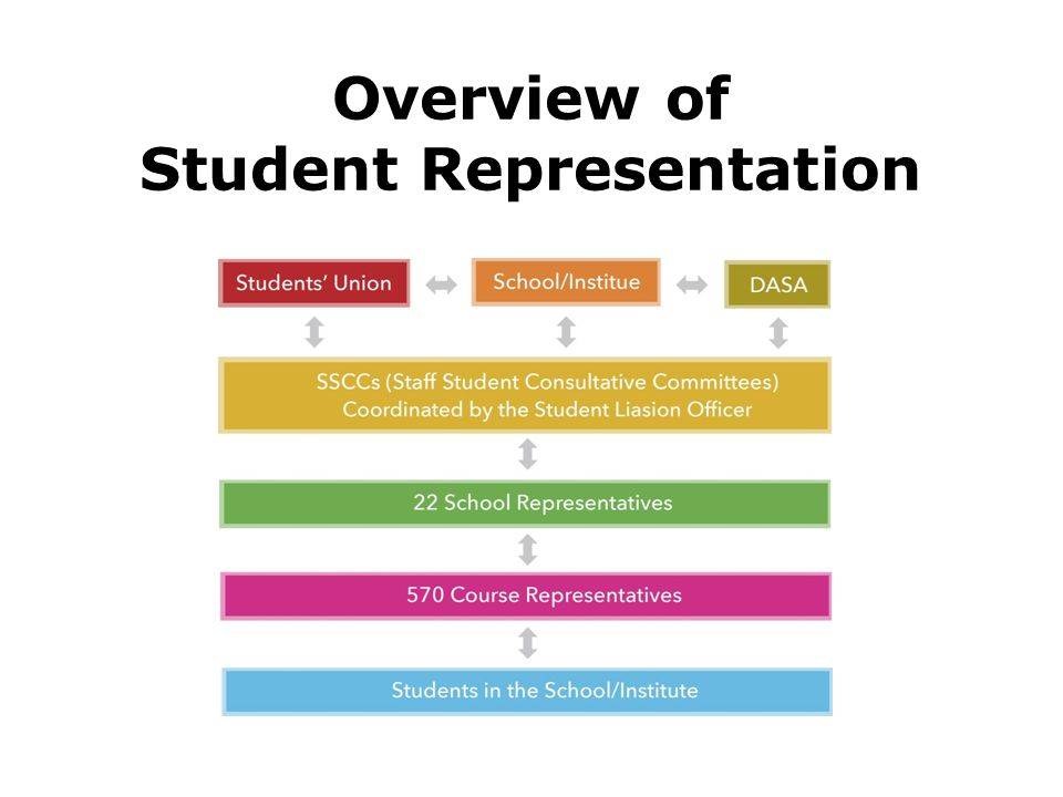 Overview of Student Representation