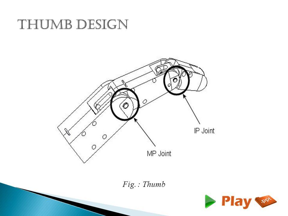 Fig. : Thumb