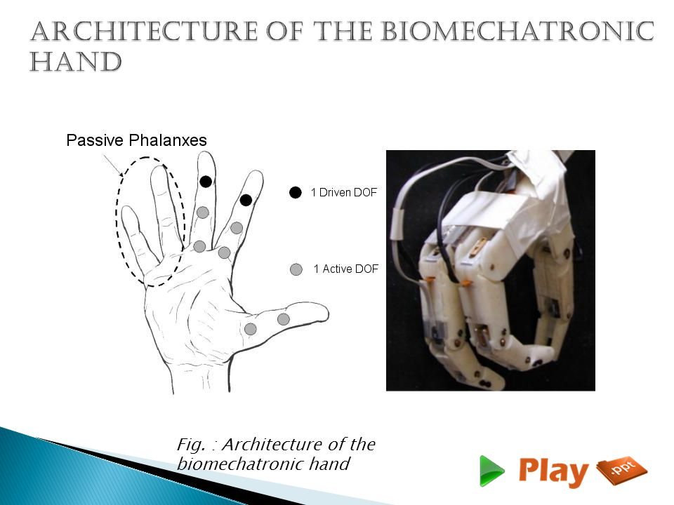 Fig. : Architecture of the biomechatronic hand