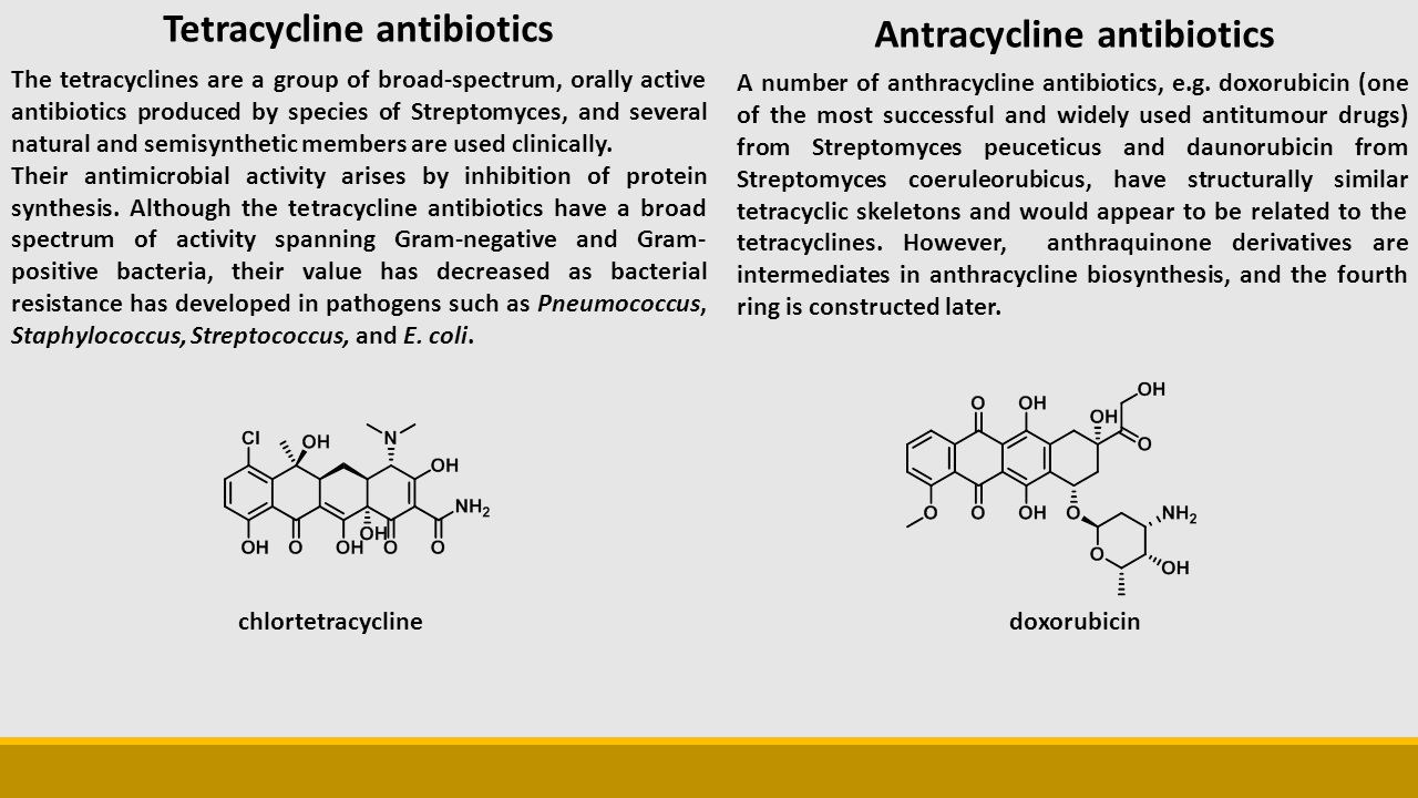 The tetracyclines are a group of broad-spectrum, orally active antibiotics produced by species of Streptomyces, and several natural and semisynthetic members are used clinically.