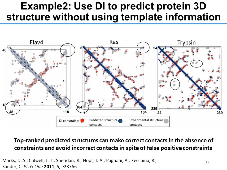 Example2: Use DI to predict protein 3D structure without using template information 17 Top-ranked predicted structures can make correct contacts in the absence of constraints and avoid incorrect contacts in spite of false positive constraints Marks, D.