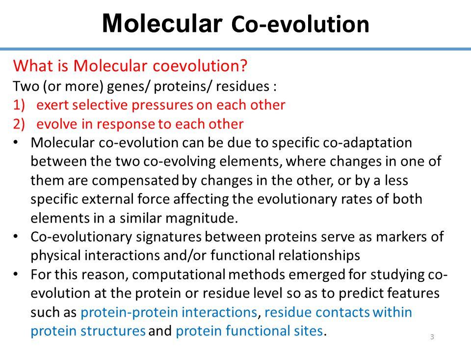 Molecular Co-evolution 3 What is Molecular coevolution.