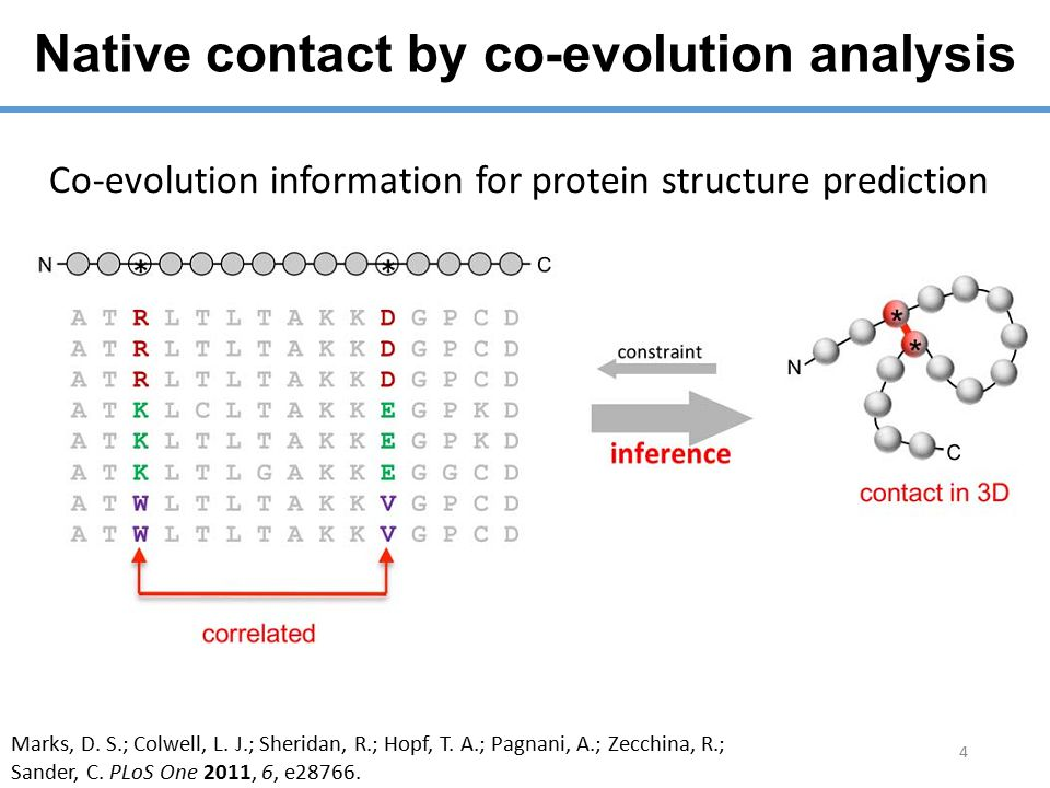Native contact by co-evolution analysis 4 Co-evolution information for protein structure prediction Marks, D.