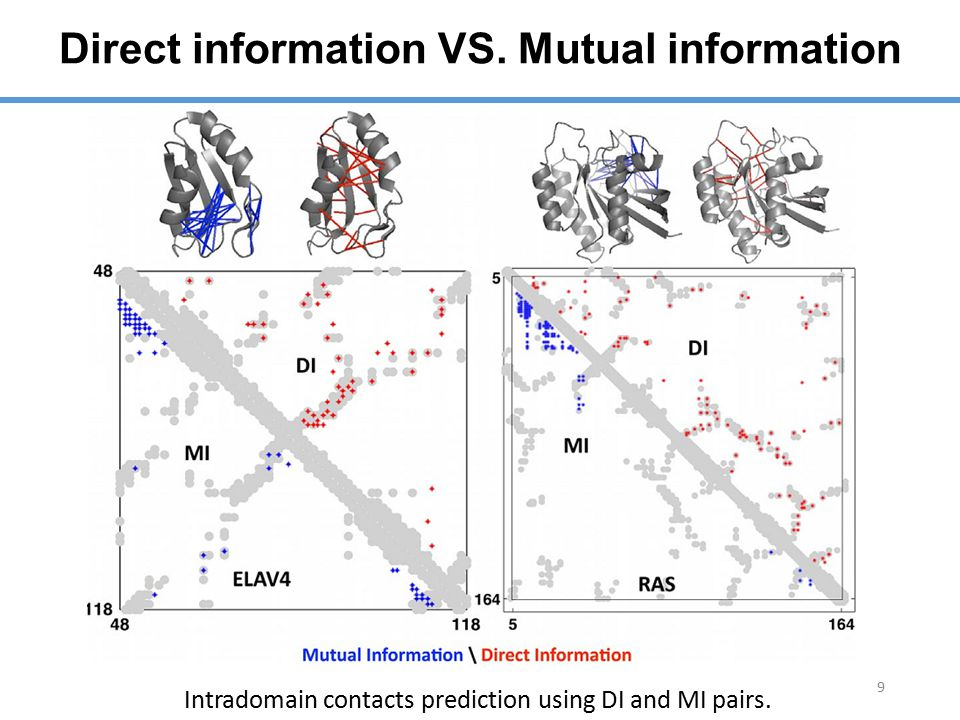 Direct information VS. Mutual information 9 Intradomain contacts prediction using DI and MI pairs.