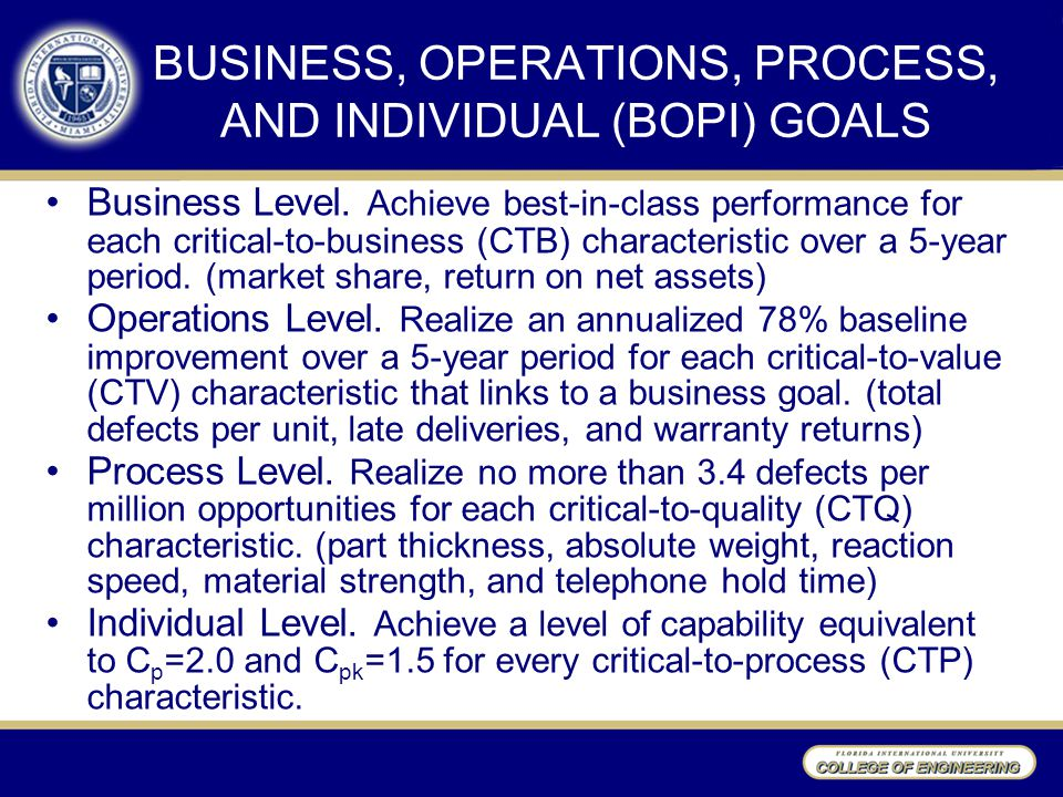 BUSINESS, OPERATIONS, PROCESS, AND INDIVIDUAL (BOPI) GOALS Business Level.