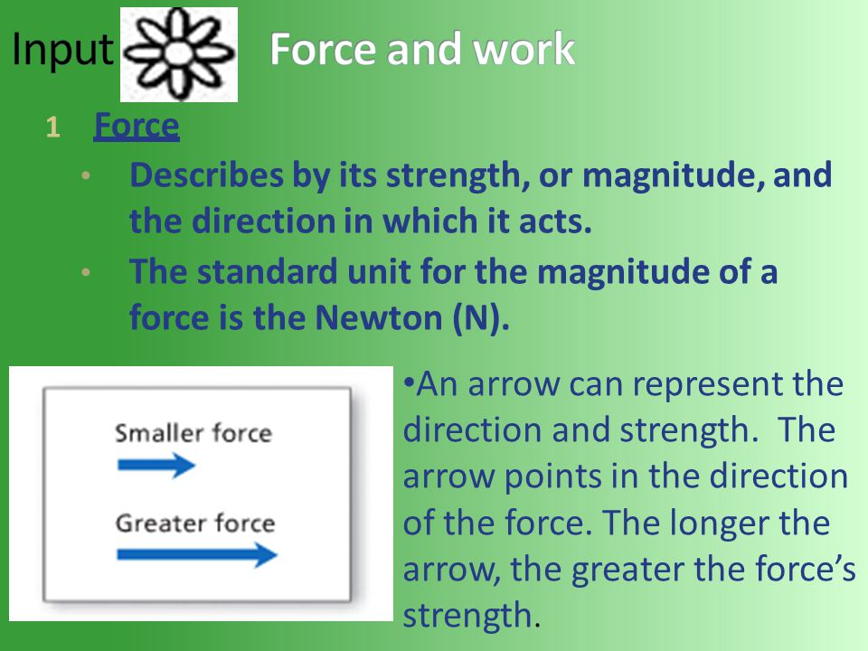 1 Force Describes by its strength, or magnitude, and the direction in which it acts. The standard unit for the magnitude of a force is the Newton (N).