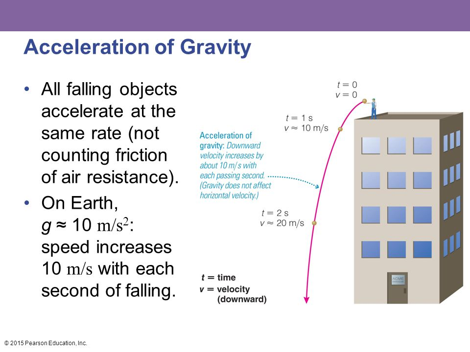 Acceleration of Gravity All falling objects accelerate at the same rate (not counting friction of air resistance). On Earth, g ≈ 10 m/s 2 : speed incr