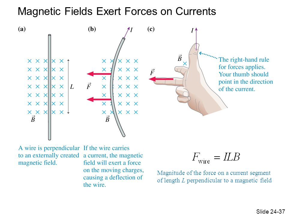 Magnetic Fields Exert Forces on Currents Magnitude of the force on a current segment of length L perpendicular to a magnetic field Slide 24-37