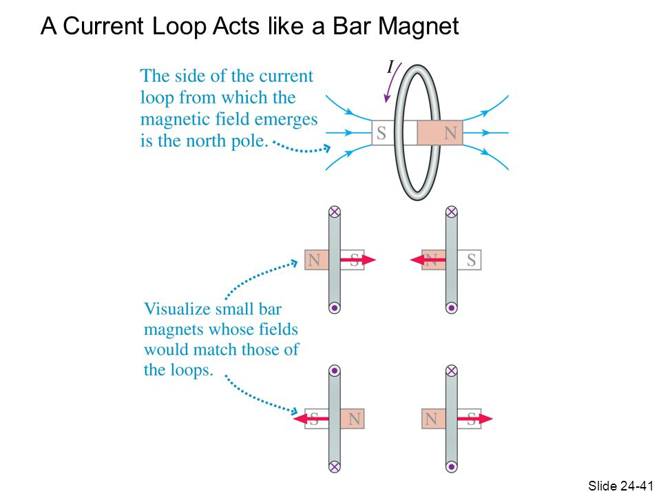 A Current Loop Acts like a Bar Magnet Slide 24-41