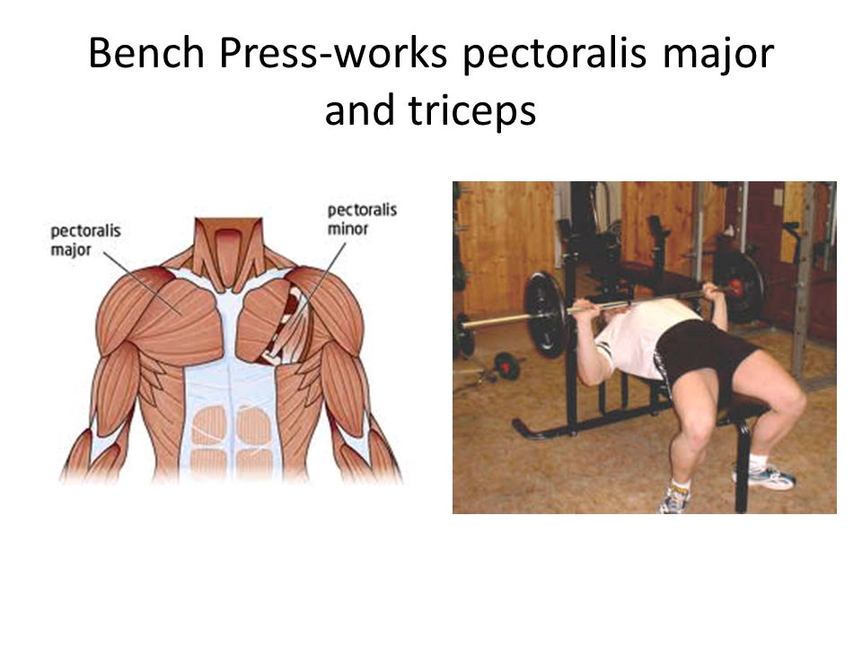 Bench Press-works pectoralis major and triceps