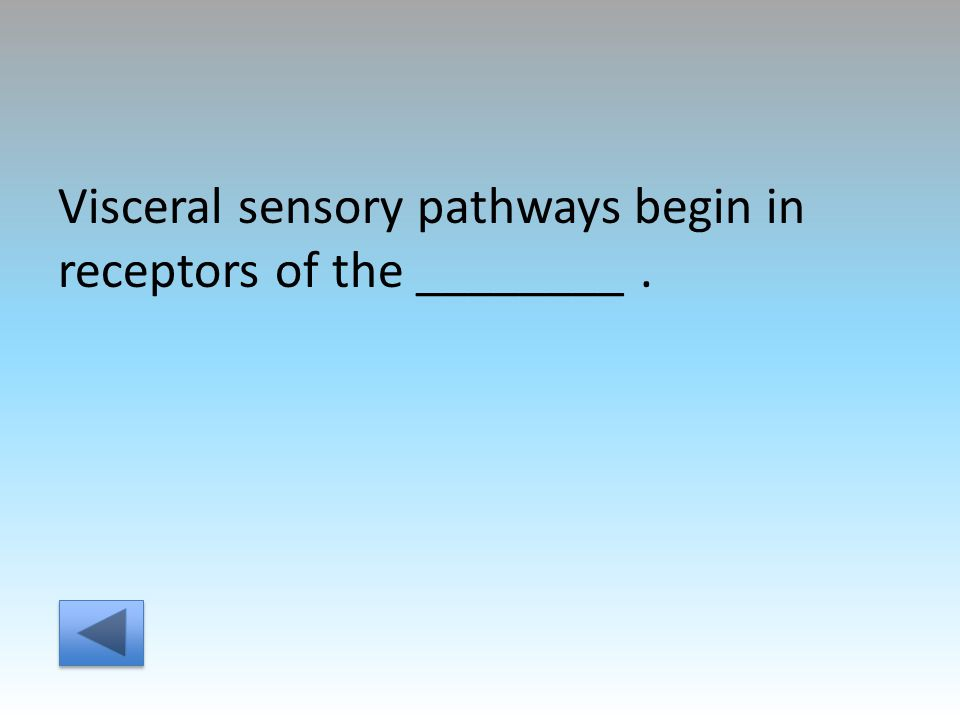 Visceral sensory pathways begin in receptors of the ________.