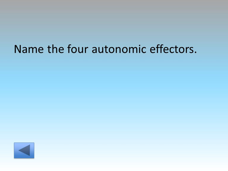 Name the four autonomic effectors.