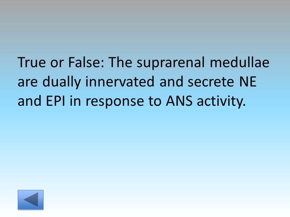 True or False: The suprarenal medullae are dually innervated and secrete NE and EPI in response to ANS activity.