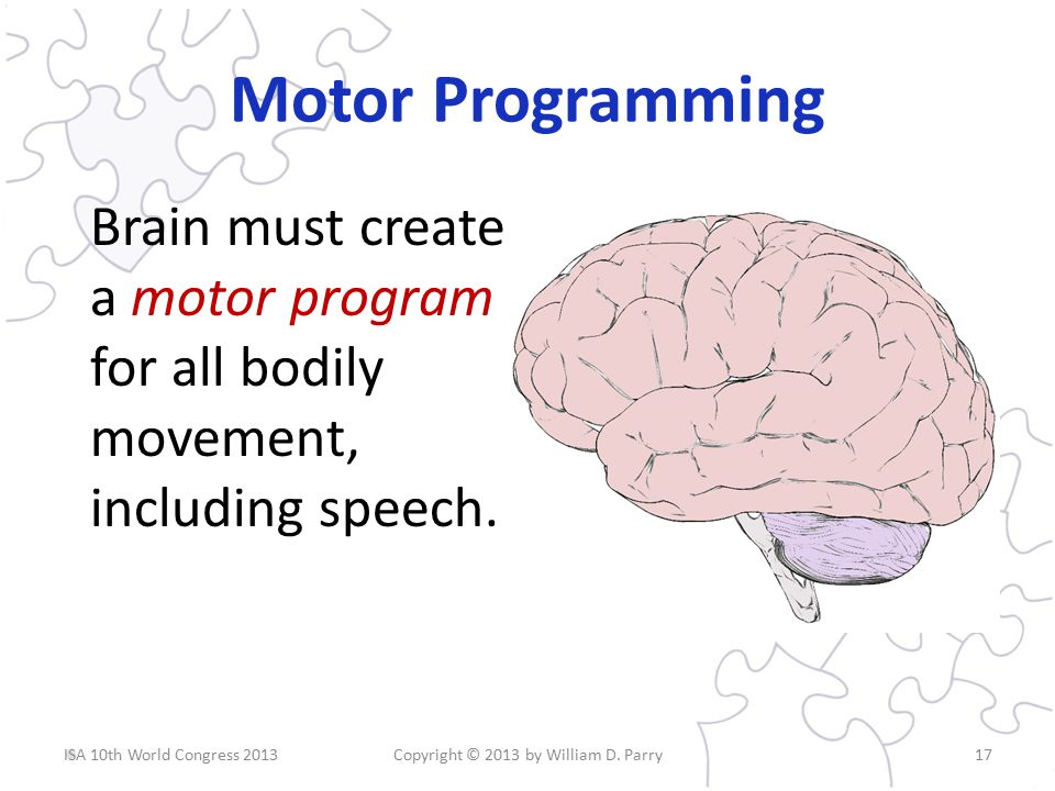 Motor Programming Brain must create a motor program for all bodily movement, including speech.