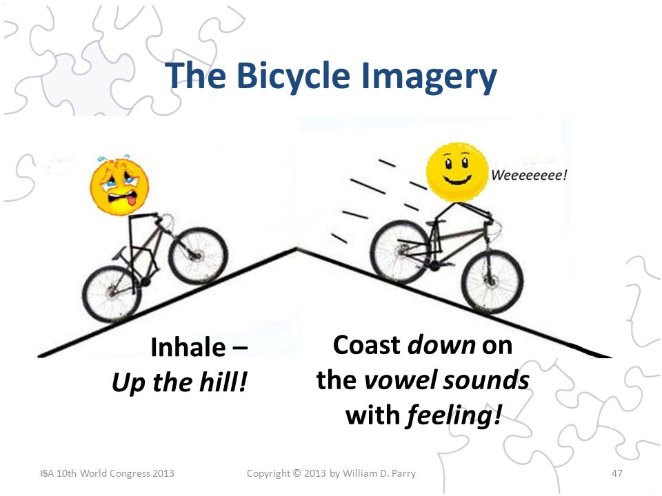 The Bicycle Imagery ISA 10th World Congress 2013Copyright © 2013 by William D.