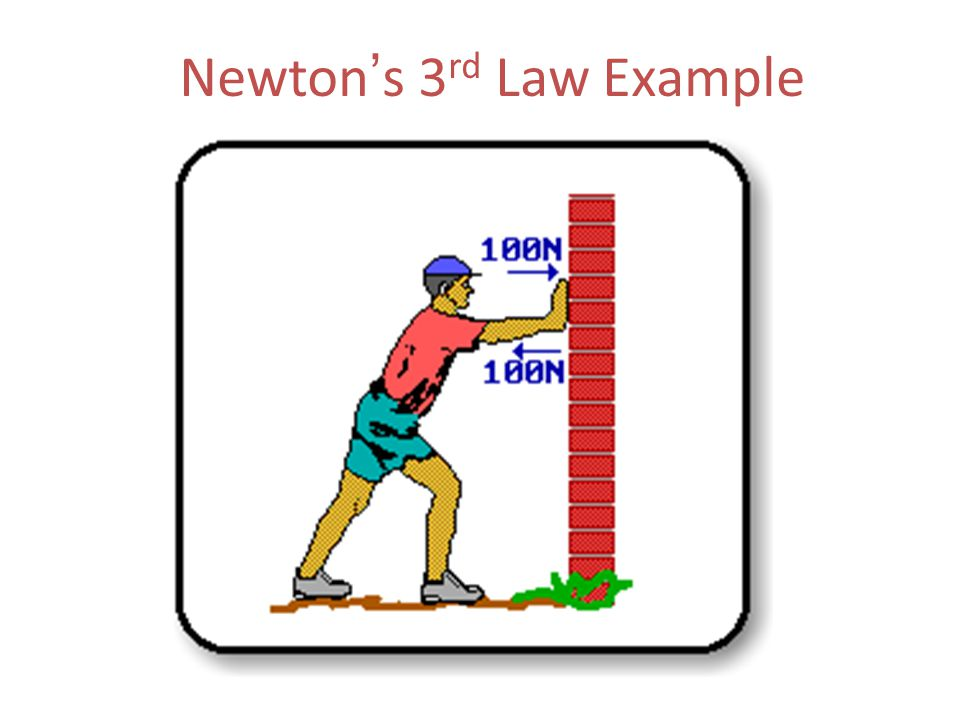 Newton ' s 3 rd Law Example