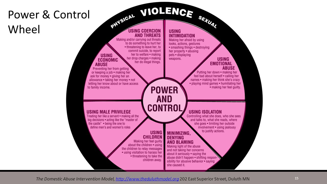 What are the dynamics of domestic violence how might abusers exert power and control 14