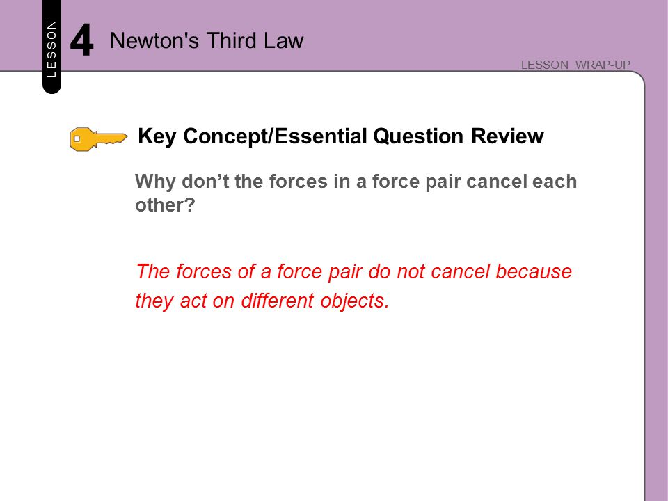 Key Concept/Essential Question Review LESSON LESSON WRAP-UP Why don't the forces in a force pair cancel each other.