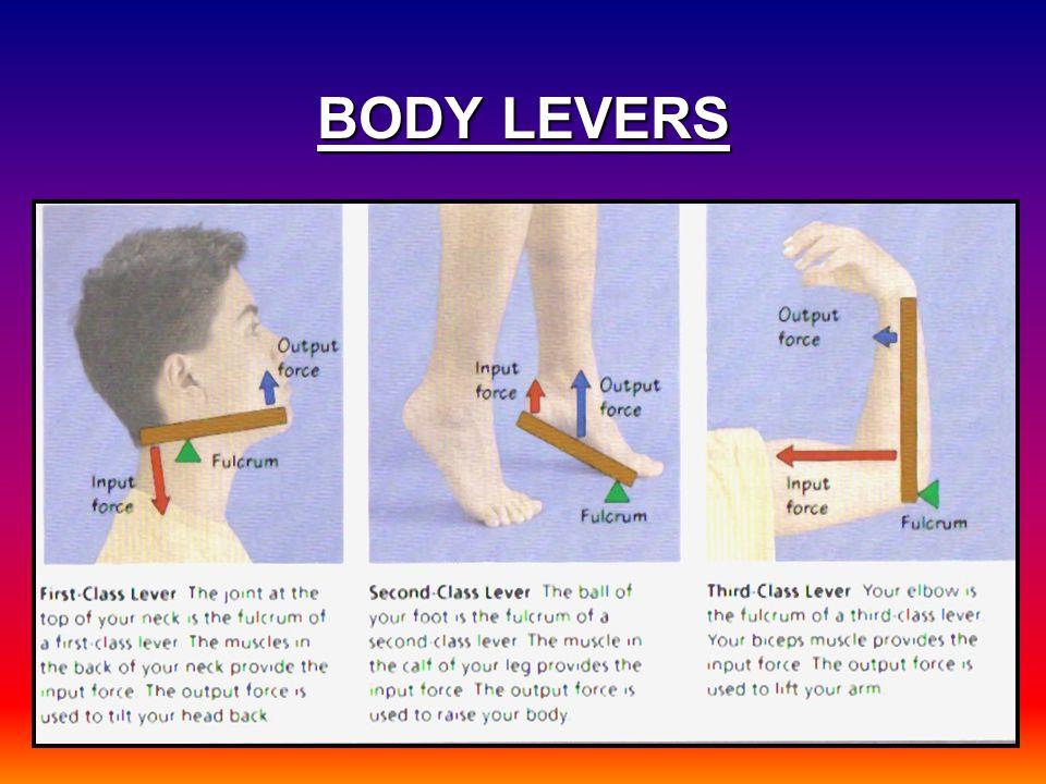BODY LEVERS
