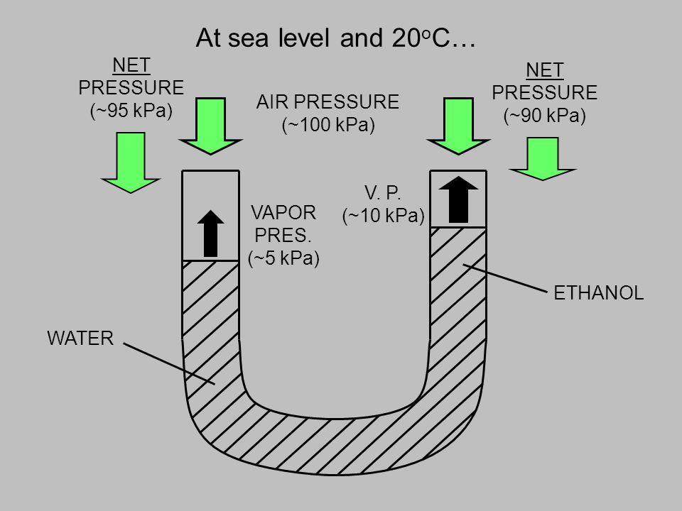 At sea level and 20 o C… WATER AIR PRESSURE (~100 kPa) ETHANOL VAPOR PRES.