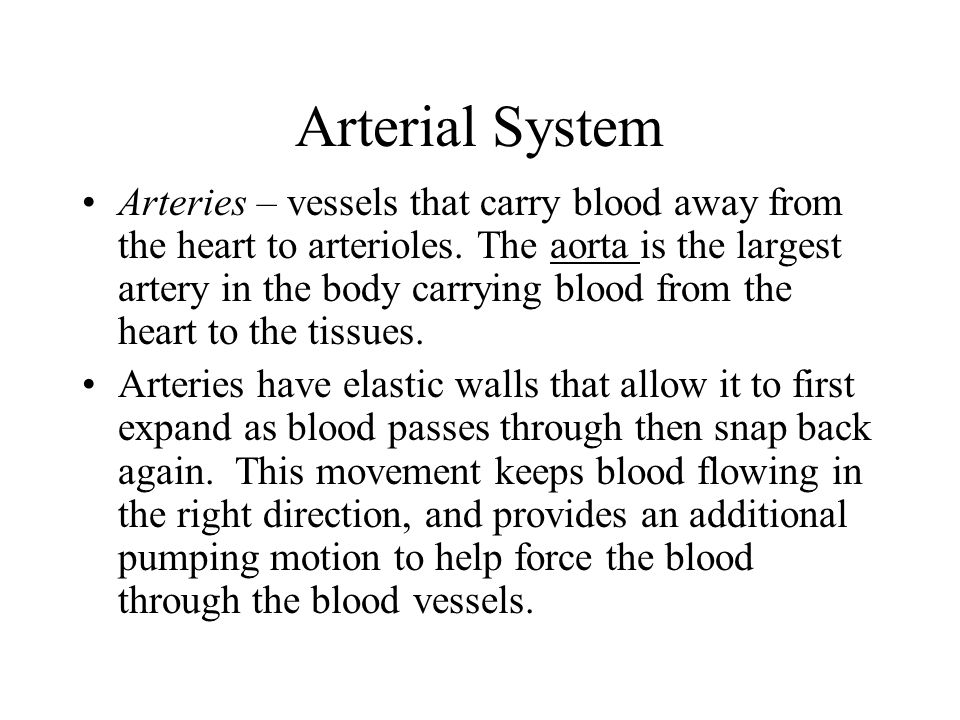 Arterial System Arteries – vessels that carry blood away from the heart to arterioles. The aorta is the largest artery in the body carrying blood from