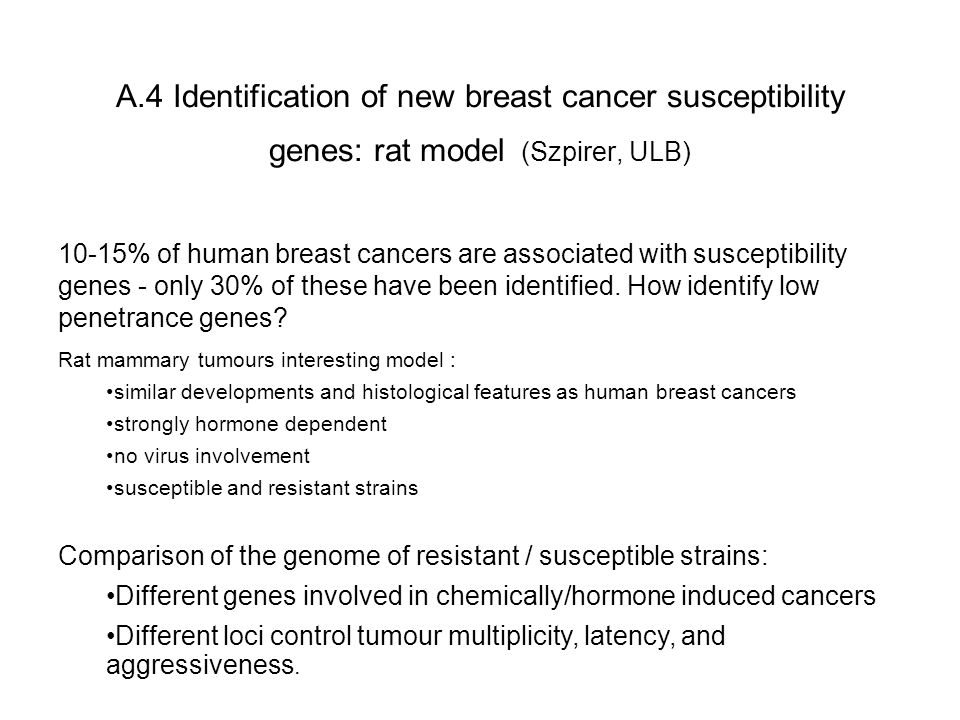 A.4 Identification of new breast cancer susceptibility genes: rat model (Szpirer, ULB) 10-15% of human breast cancers are associated with susceptibility genes - only 30% of these have been identified.