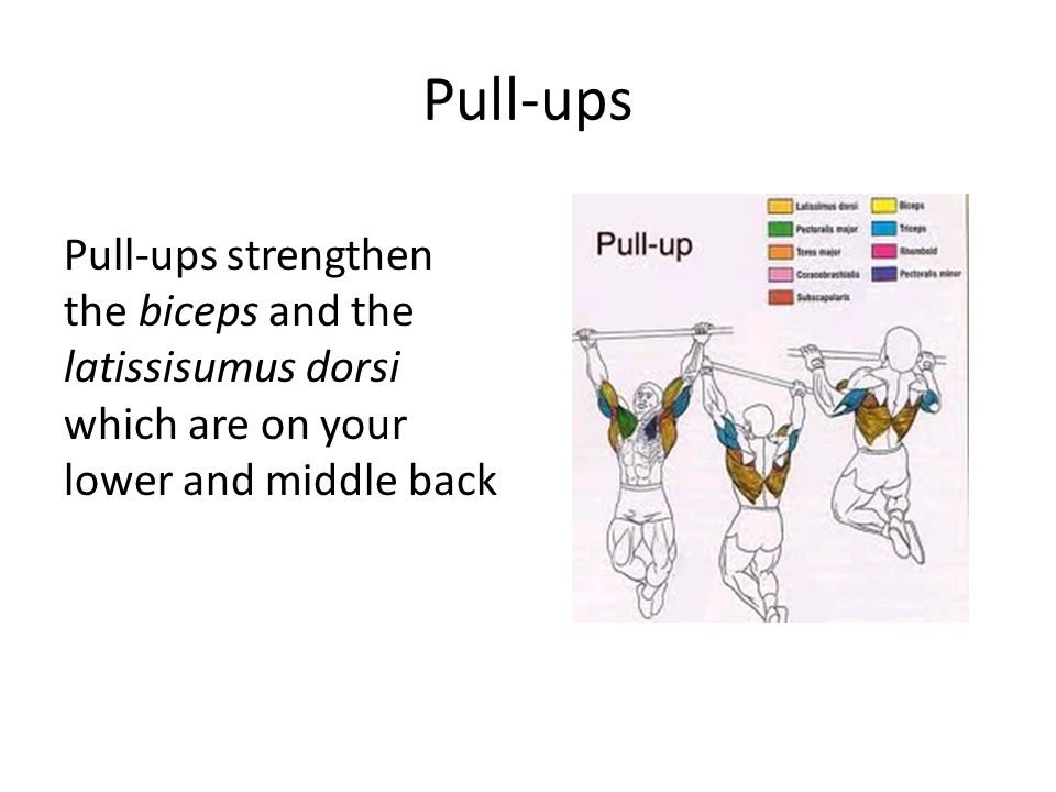 Pull-ups Pull-ups strengthen the biceps and the latissisumus dorsi which are on your lower and middle back