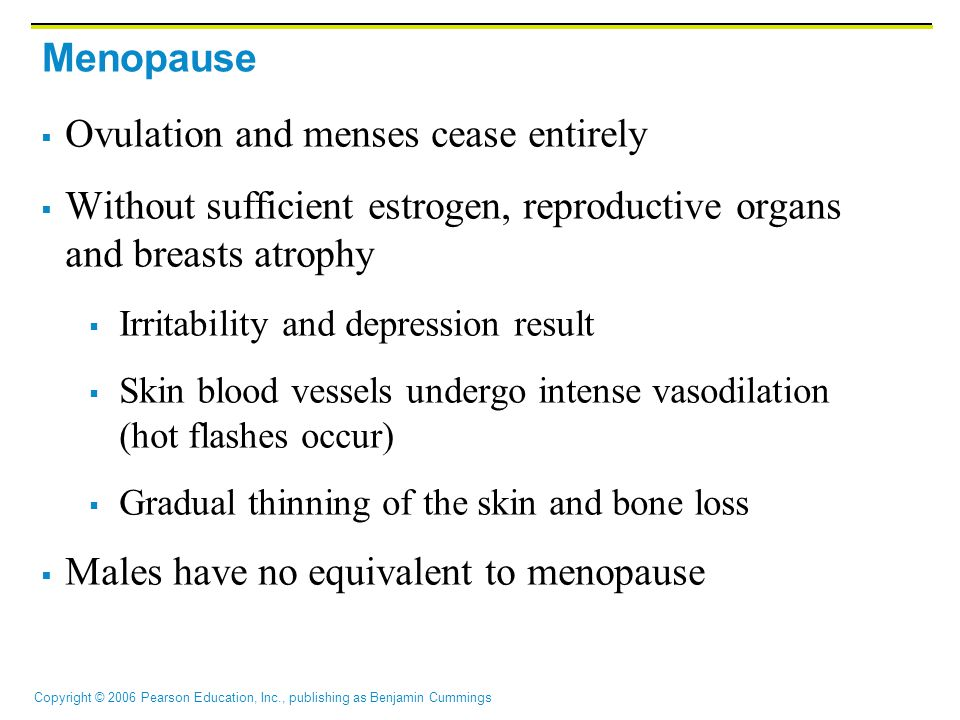 Copyright © 2006 Pearson Education, Inc., publishing as Benjamin Cummings Menopause  Ovulation and menses cease entirely  Without sufficient estrogen, reproductive organs and breasts atrophy  Irritability and depression result  Skin blood vessels undergo intense vasodilation (hot flashes occur)  Gradual thinning of the skin and bone loss  Males have no equivalent to menopause