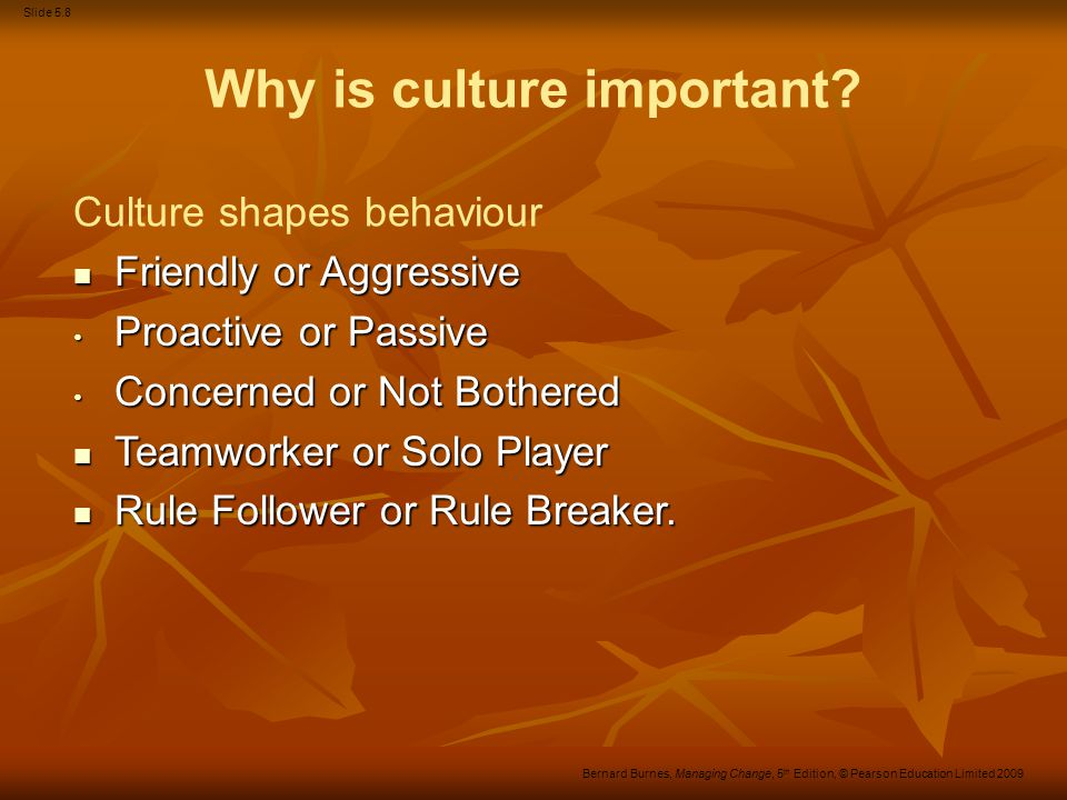 Slide 5.19 Bernard Burnes, Managing Change, 5 th Edition, © Pearson Education Limited 2009 Figure 5.2 A structure–culture continuum