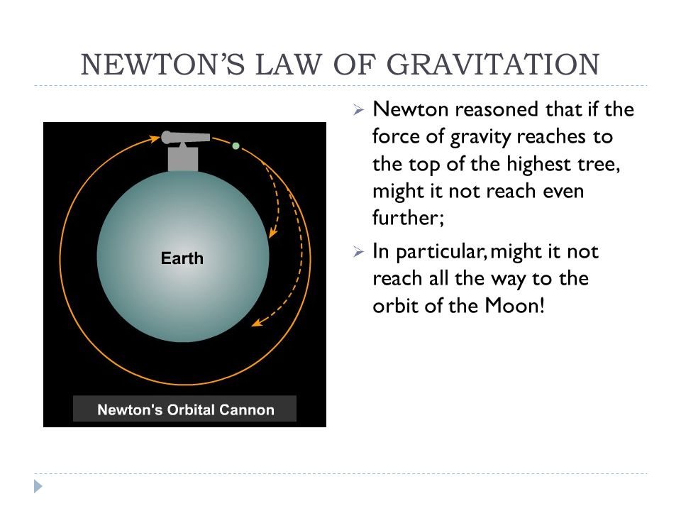 NEWTON'S LAW OF GRAVITATION  Newton reasoned that if the force of gravity reaches to the top of the highest tree, might it not reach even further;  In particular, might it not reach all the way to the orbit of the Moon!