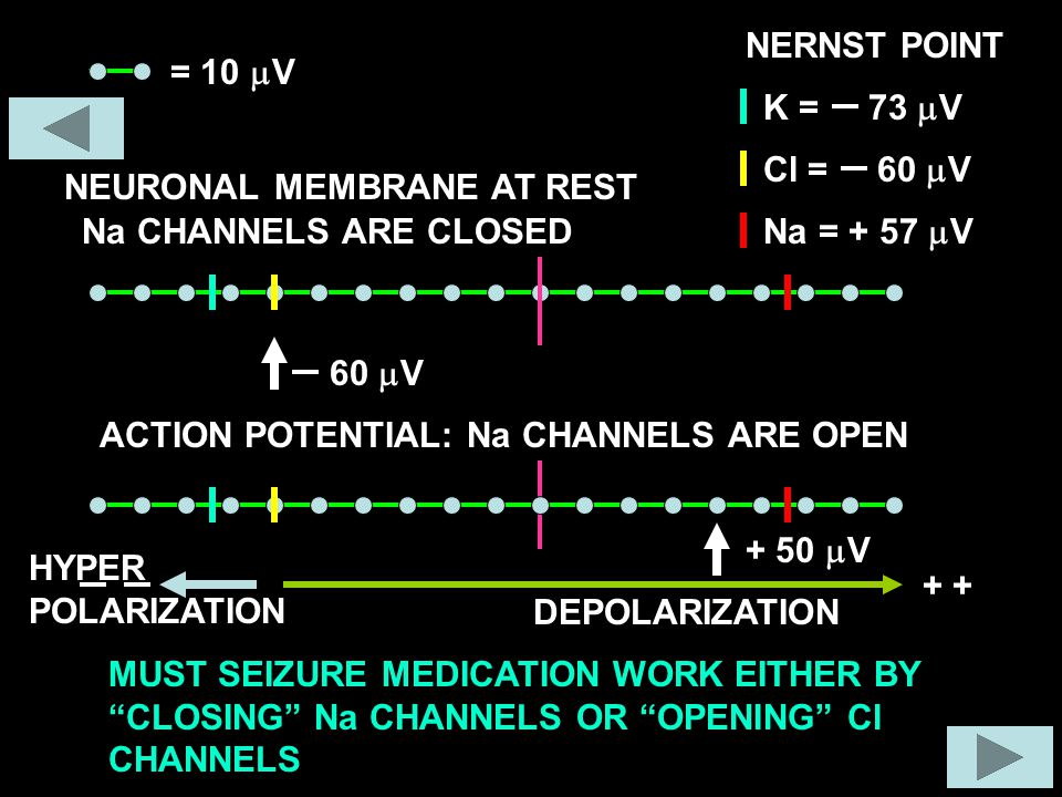 = 10  V + NEURONAL MEMBRANE AT REST 60  V DEPOLARIZATION ACTION POTENTIAL: Na CHANNELS ARE OPEN HYPER POLARIZATION NERNST POINT = 73  V K = 60  V Cl Na = + 57  V Na CHANNELS ARE CLOSED + 50  V MUST SEIZURE MEDICATION WORK EITHER BY CLOSING Na CHANNELS OR OPENING Cl CHANNELS