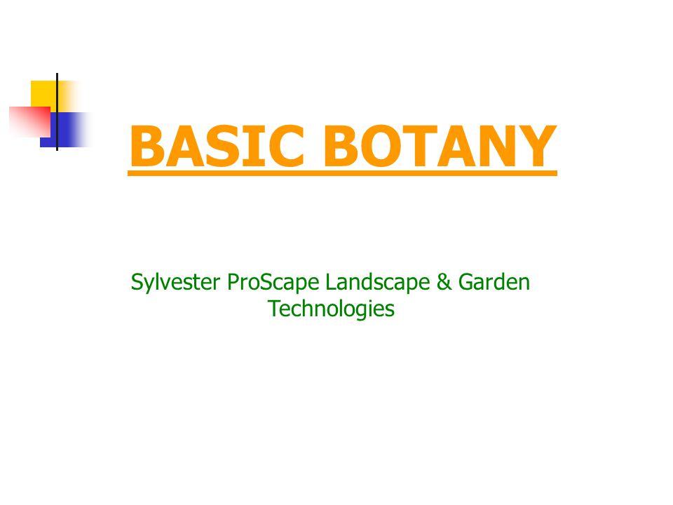 1 BASIC BOTANY Sylvester ProScape Landscape U0026 Garden Technologies
