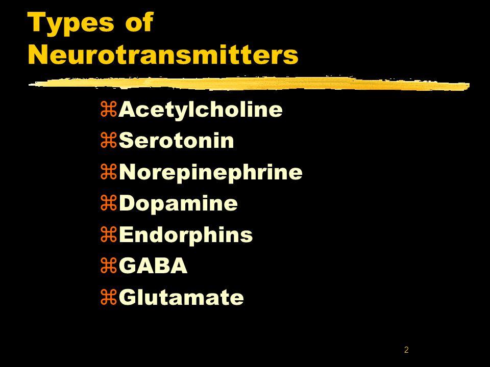 2 Types of Neurotransmitters zAcetylcholine zSerotonin zNorepinephrine zDopamine zEndorphins zGABA zGlutamate