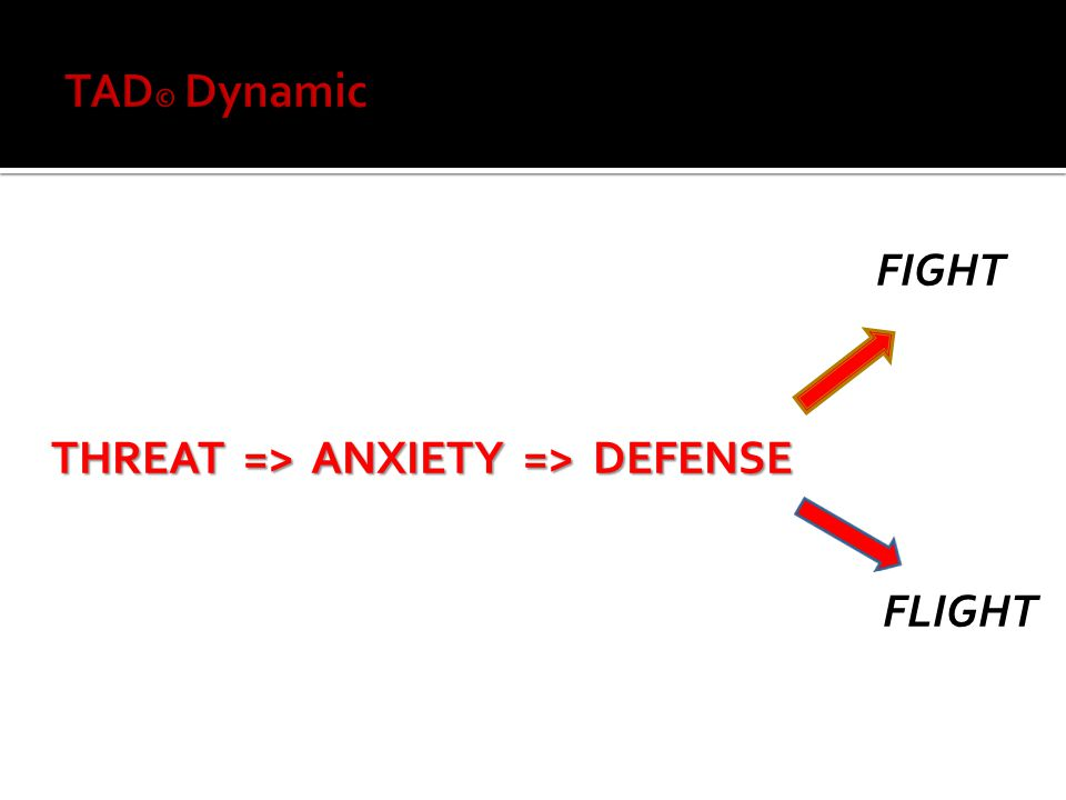 FIGHT THREAT => ANXIETY => DEFENSE FLIGHT