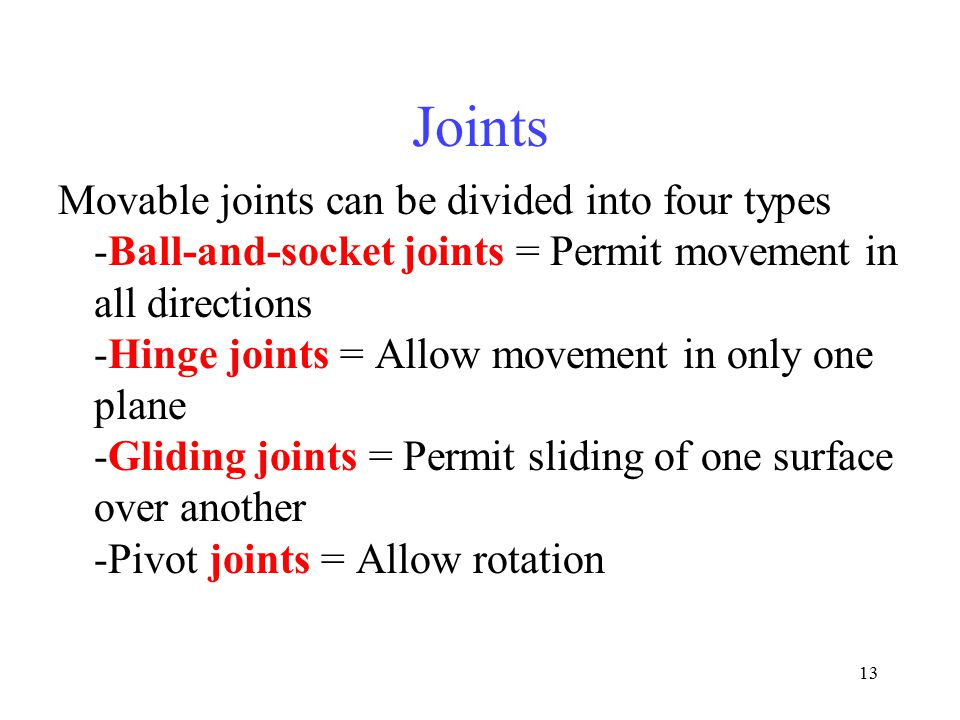 13 Joints Movable joints can be divided into four types -Ball-and-socket joints = Permit movement in all directions -Hinge joints = Allow movement in