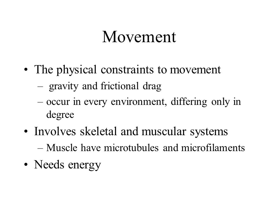 3 Types of Skeletal Systems Changes in movement occur because muscles pull against a support structure, called the skeletal system -Zoologists recognize three types: -Hydrostatic skeletons -Exoskeletons -Endoskeletons