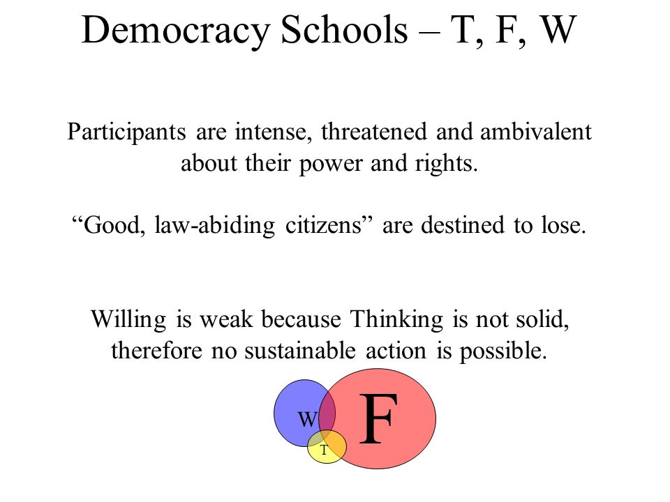 Democracy Schools – T, F, W Participants are intense, threatened and ambivalent about their power and rights.