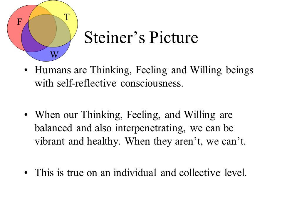 Steiner's Picture Humans are Thinking, Feeling and Willing beings with self-reflective consciousness.