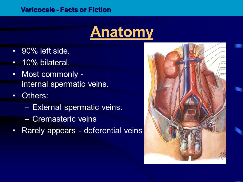 Pathophysiology Is not known for certain.