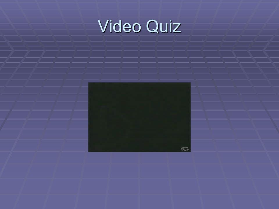 Video Quiz