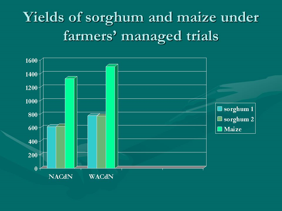 Yields of sorghum and maize under farmers' managed trials