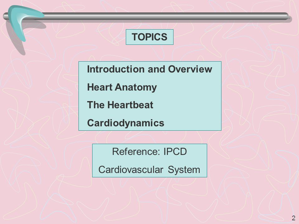 2 TOPICS Introduction and Overview Heart Anatomy The Heartbeat Cardiodynamics Reference: IPCD Cardiovascular System