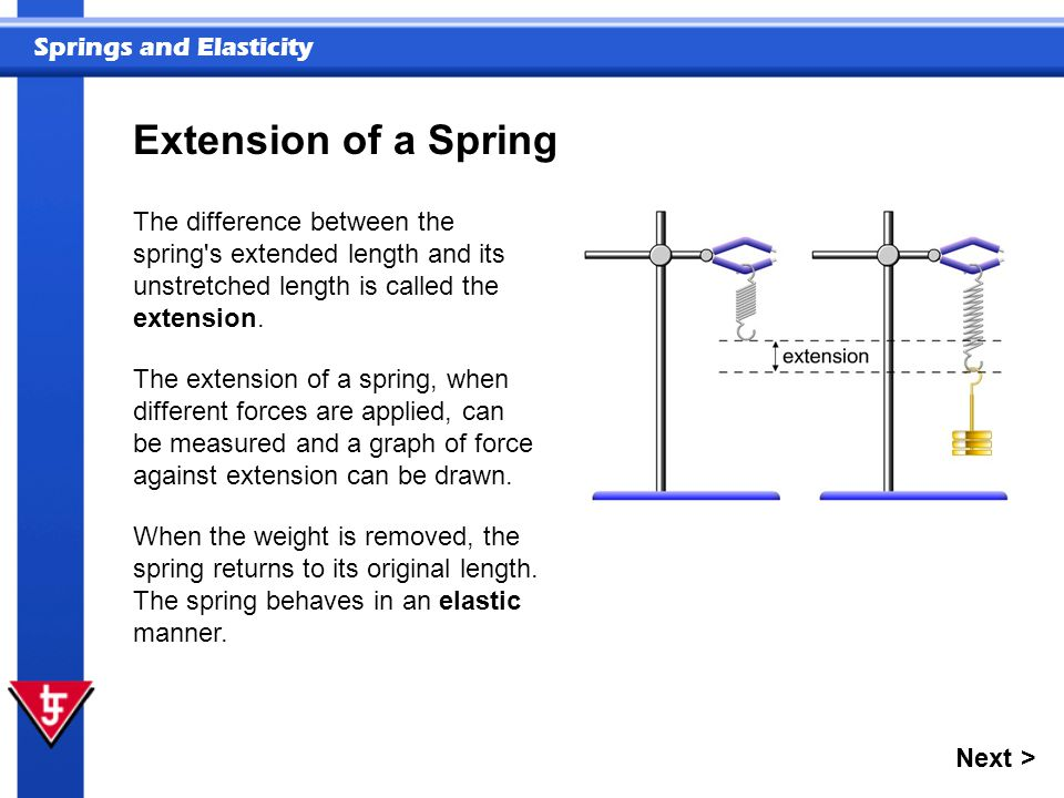 Springs and Elasticity Extension of a Spring The extension of a spring, when different forces are applied, can be measured and a graph of force against extension can be drawn.