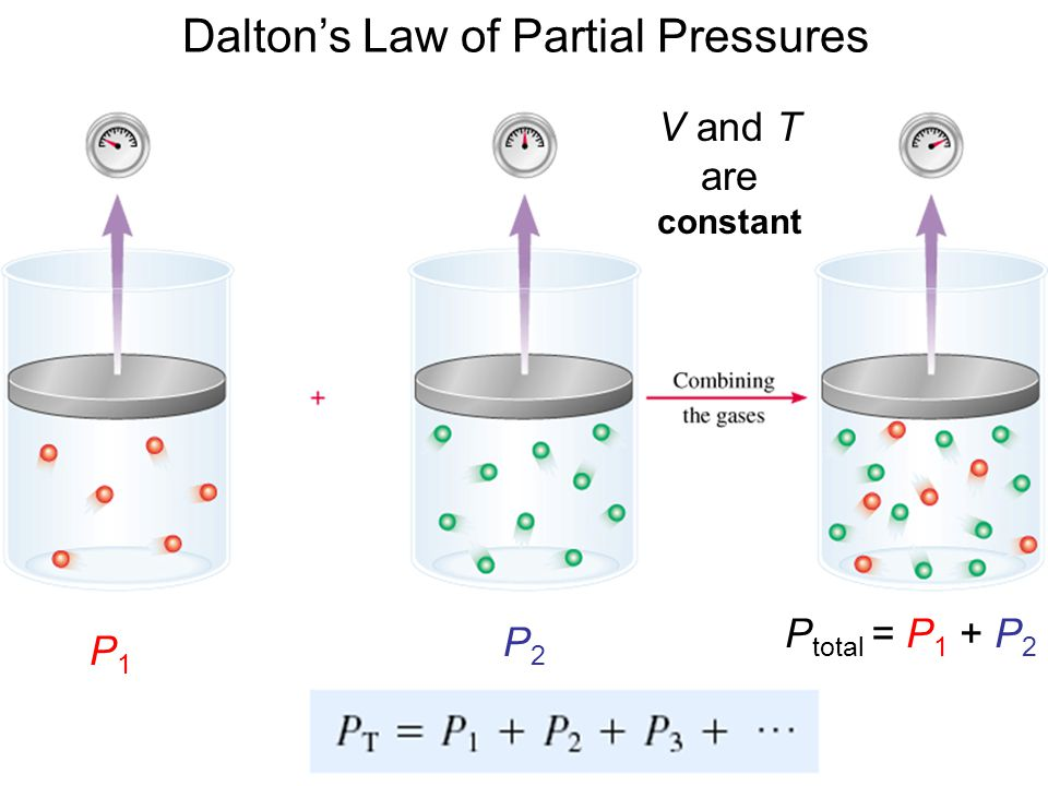 Dalton's Law of Partial Pressures V and T are constant P1P1 P2P2 P total = P 1 + P 2