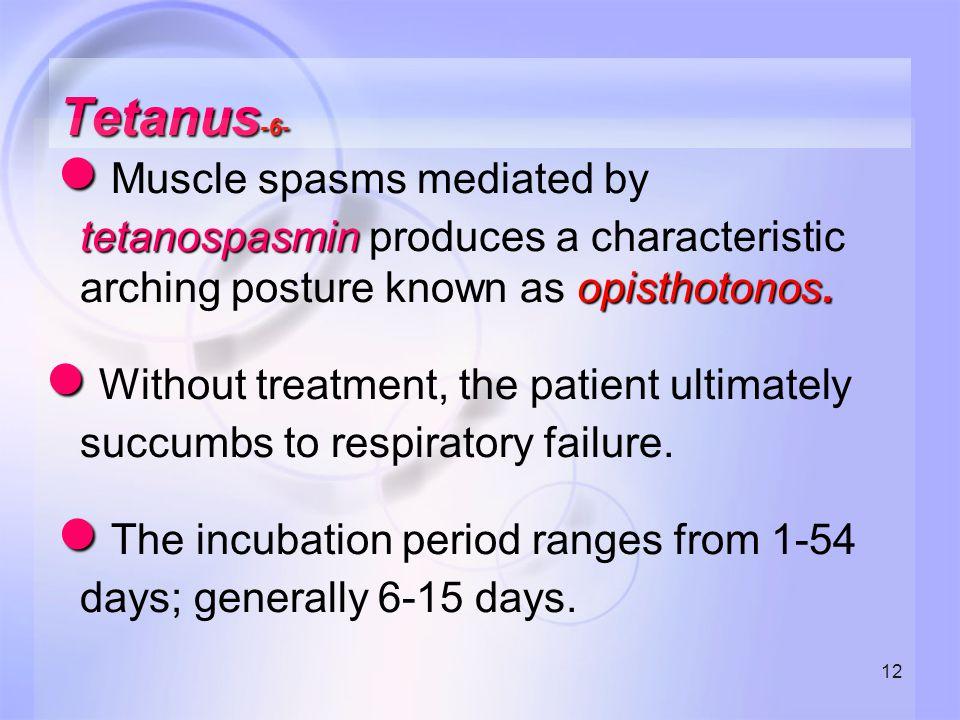 12 Tetanus -6- ● tetanospasmin opisthotonos. ● Muscle spasms mediated by tetanospasmin produces a characteristic arching posture known as opisthotonos