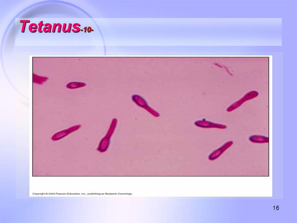 16 Tetanus -10-